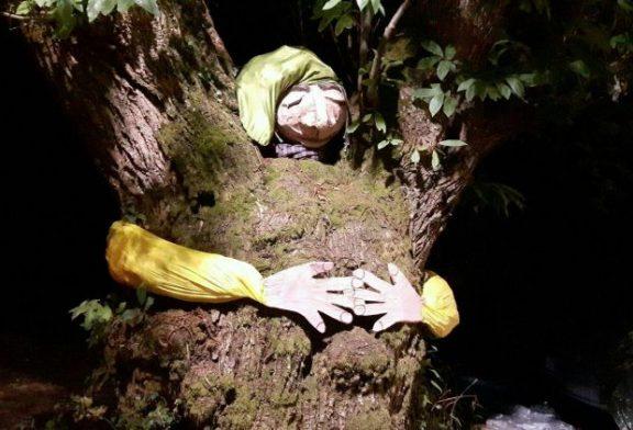 Ad Agosto torna il bosco fatato a Montaldo Roero