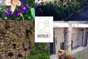 Il Borgo Castello rifiorisce grazie all'intervento dell'Associazione Castello C'E'