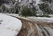 Neve, alberature cadute e interruzioni di corrente a Vezza d'Alba