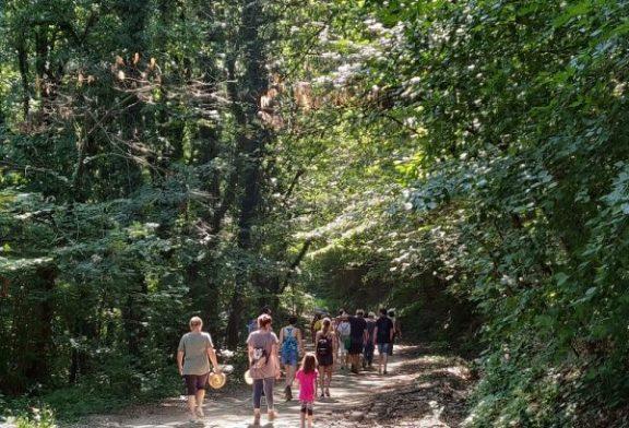 Domenica 1 settembre si cammina tra i vigneti di Clavesana