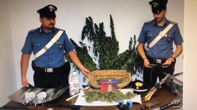 Arrestato un uomo per produzione e detenzione ai fini di spaccio di stupefacenti