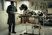 """""""Dogman"""" per la rassegna Cineocchio"""