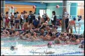 Nuotalascuola: in vasca gli studenti albesi