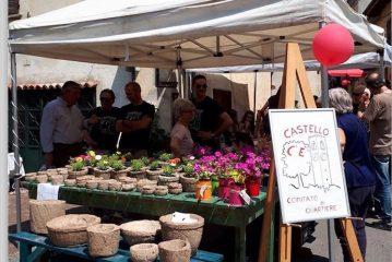 La Fiera della Ciliegia quest'anno è dedicata all'agricoltura