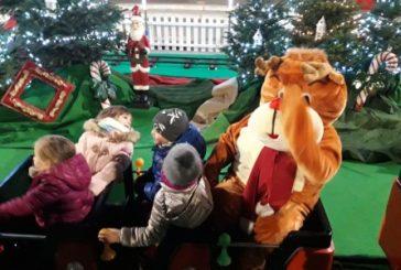 La magia del Natale si diffonde sul territorio anche dopo le Festività; Egea dona 30 alberi ai Comuni della zona
