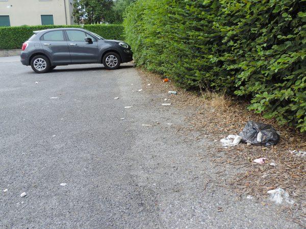 Maleducati lordano il parcheggio: e la pulizia?