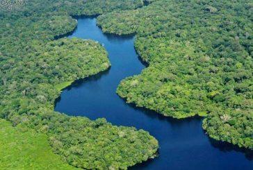 Alla Scuola di pace di Bra si parla del Sinodo dell'Amazzonia