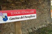 Al Pavaglione mostra sui grandi scrittori del Novecento