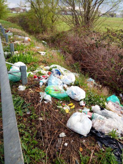 «La tangenziale di Sommariva del Bosco è ridotta a una vergognosa discarica»