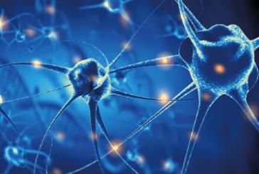 In Fondanzione Ferrero si parla di innovazioni neurotecnologiche nella terapia delle lesioni del midollo spinale