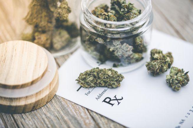 Coltivazione della cannabis: Coldiretti chiede un intervento definitivo del legislatore