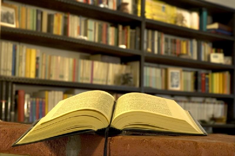 A tu per tu con gli scrittori: l'esperienza dei ragazzi della primaria Alloesio di Priocca