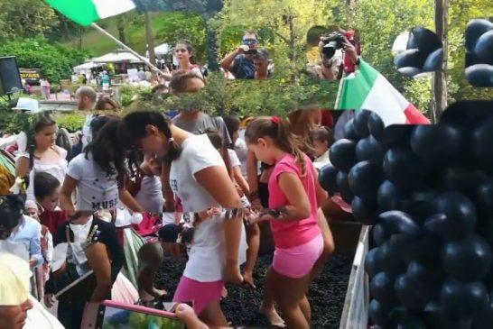 Serralunga: annullata domani la Festa della Vendemmia
