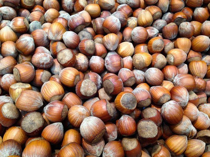 """Ferrero a """"caccia"""" di nocciole made in Italy"""