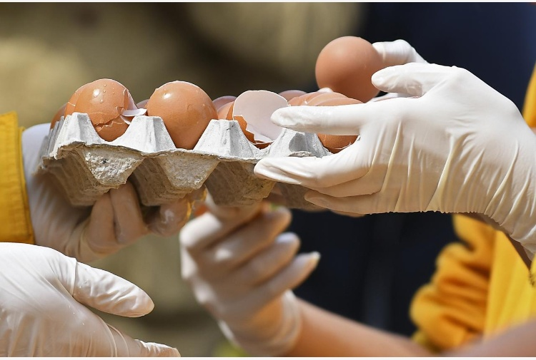 Uova ritirate dalla vendita dal ministero della Salute coinvolta anche un'azienda del cuneese