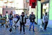 A Canale si celebrano i Trifolao e i  cani cercatori