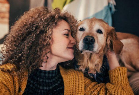 Storie di cani e di amici