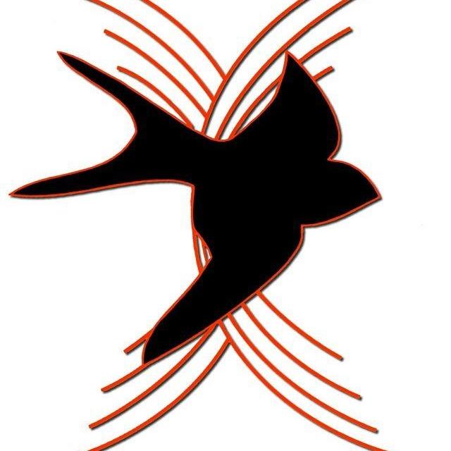 Alba: rinviata la tradizionale tombola dell'associazione Andos