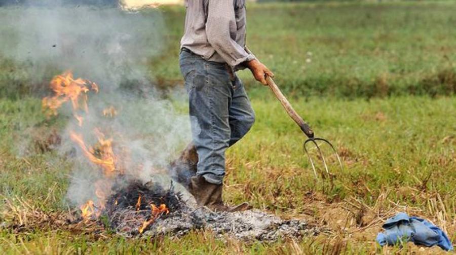 Alba: deroga al divieto di abbruciamento degli scarti vegetali - Il Corriere di Alba Bra Langhe e Roero