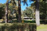 Cinema, musica, danza e teatro: si anima l'estate al Belvedere a Bra